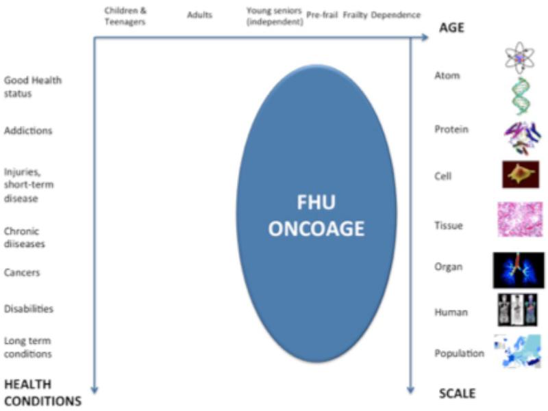 graph-fhuoncoage